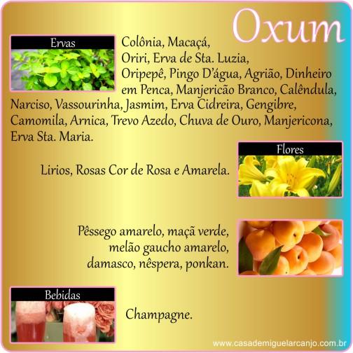 Infográfico_Oxum_Ervas-Frutas-Flores-Bebidas