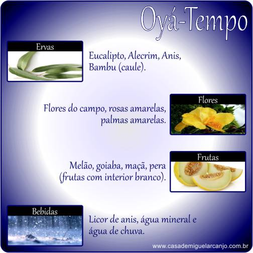 Infográfico_Oyá_Ervas-Frutas-Flores-Bebidas